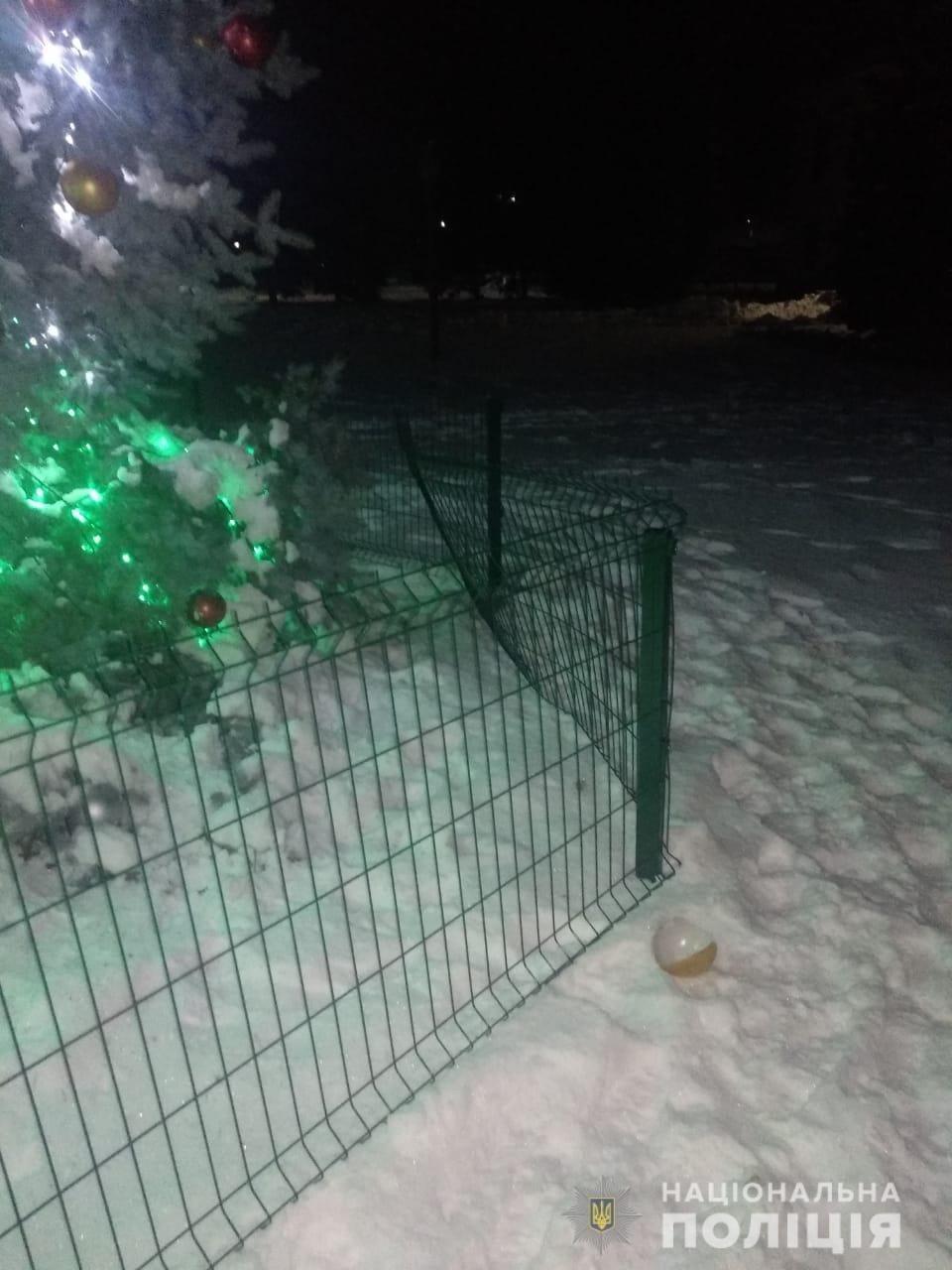 Под Харьковом подростки разнесли новогоднюю елку, - ФОТО, фото-1
