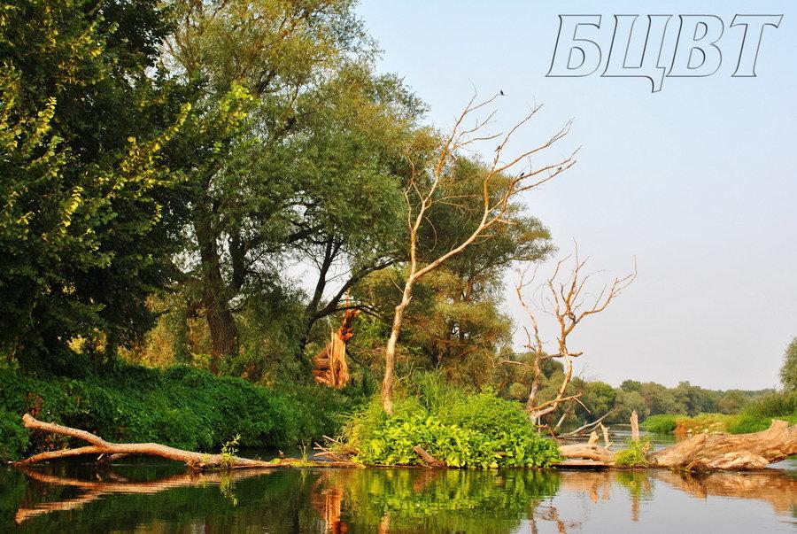 Активный отдых в Харькове - спортивные площадки, водный спорт, прокат и аренда транспорта в Харькове, фото-15