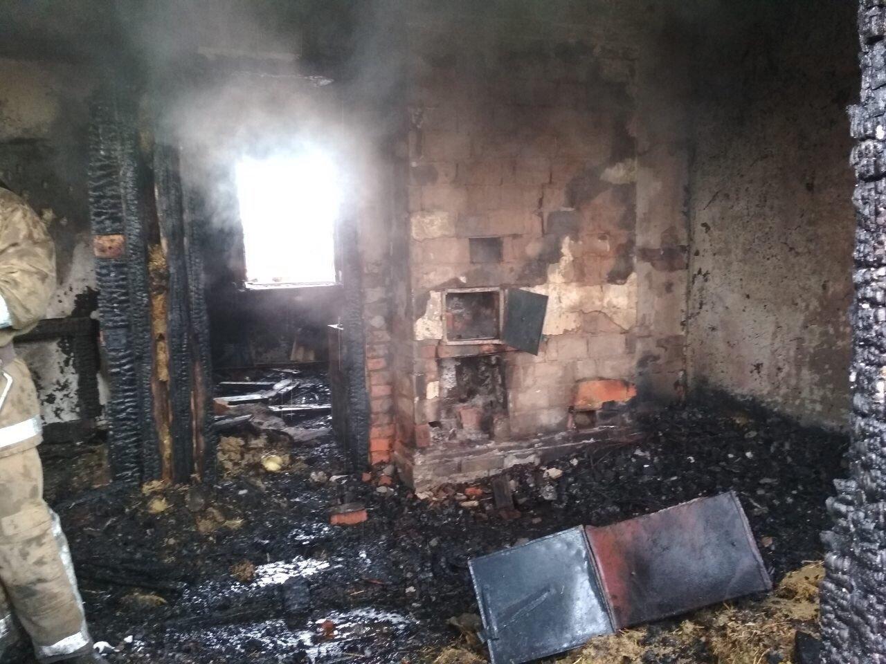 В Харьковской области бойцы ГСЧС спасли пенсионерку из горящего дома, - ФОТО, фото-1