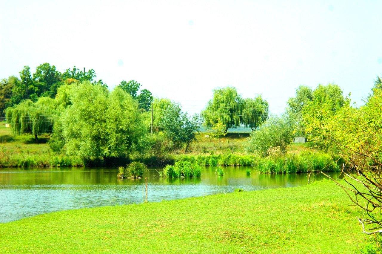 Отдых за городом в Харькове:  туры из Харькова, базы отдыха, пансионаты, отдых возле водоема, фото-191