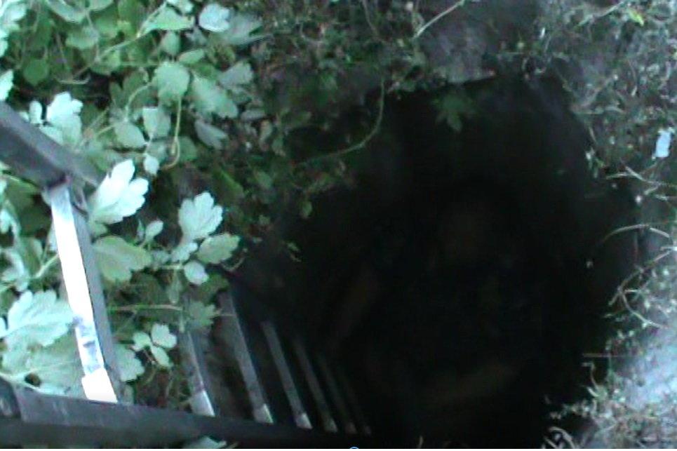 Упала в заброшенный колодец: на Харьковщине спасли пенсионерку, - ФОТО, фото-1
