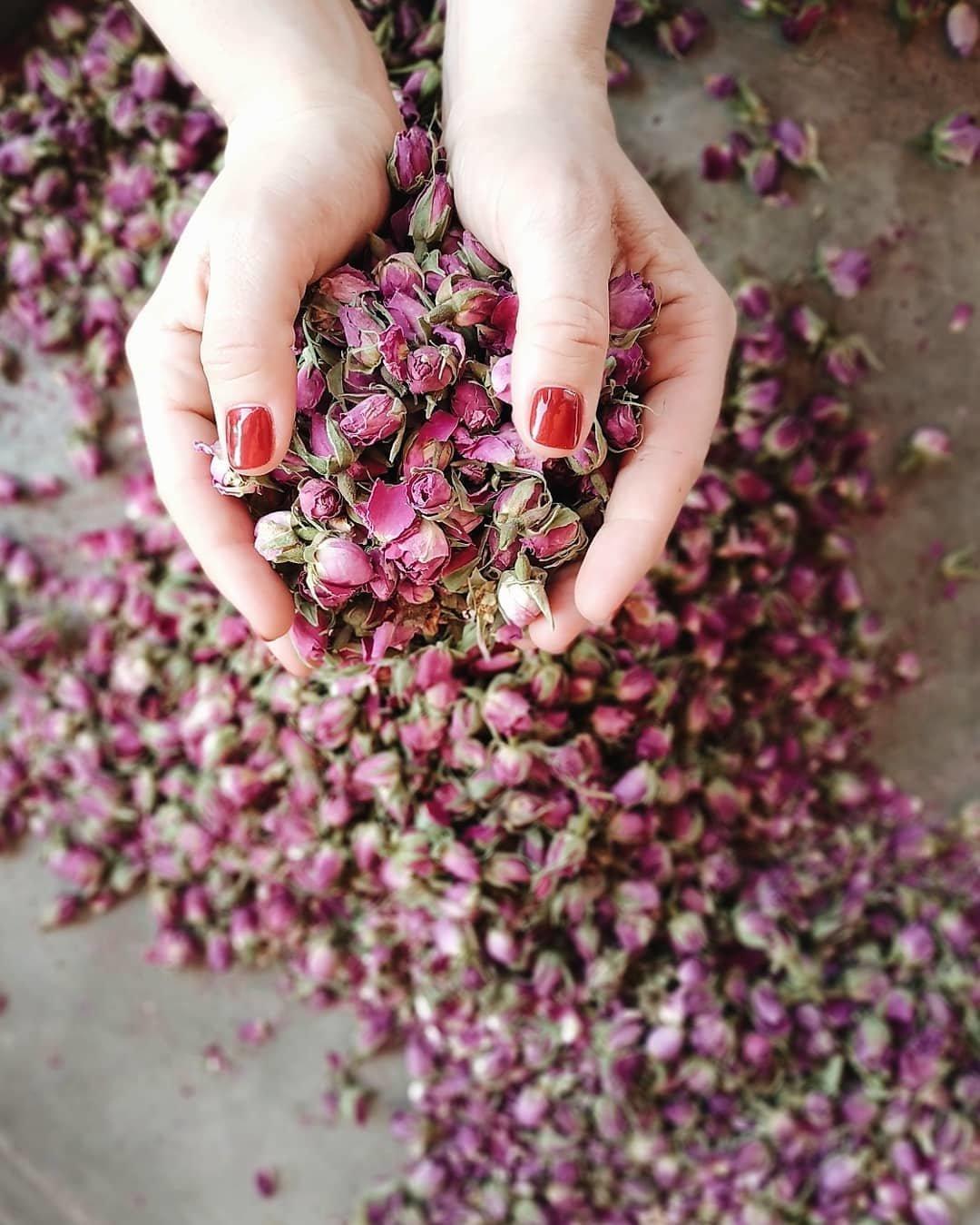 Город роз, персидские дворцы и Медина. Как харьковчанка провела две недели в Иране и Марокко, - ФОТО, фото-9