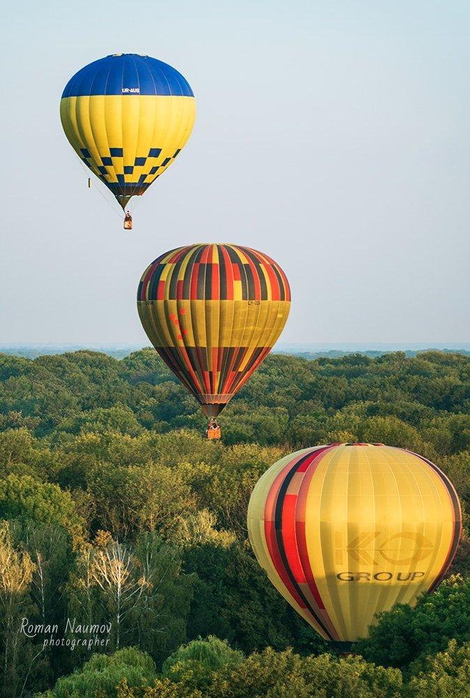 Ко Дню Независимости устроят масштабный фестиваль воздушных шаров   , фото-5