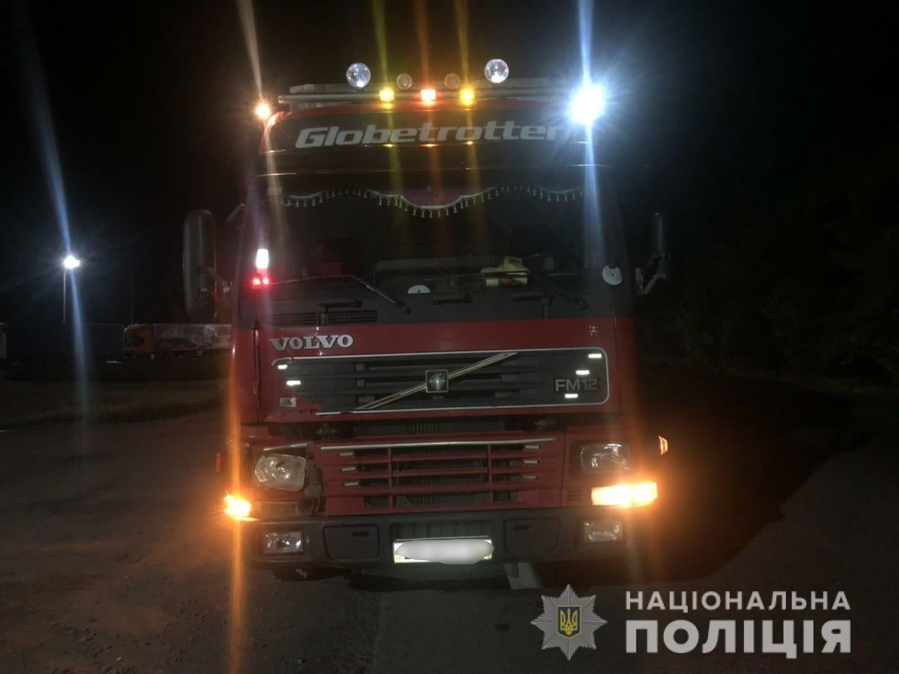 Переходил дорогу в неположенном месте: под Харьковом фура насмерть переехала пешехода, - ФОТО, фото-1
