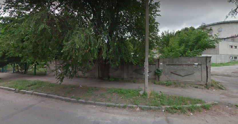 В Харькове заметили слона, который разгуливал возле детсада, - ФОТО, ВИДЕО, фото-2