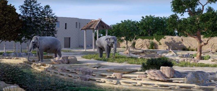 Вольеры для жирафов, макак и фламинго: сколько денег потратят на реконструкцию Харьковского зоопарка, - ФОТО, фото-3