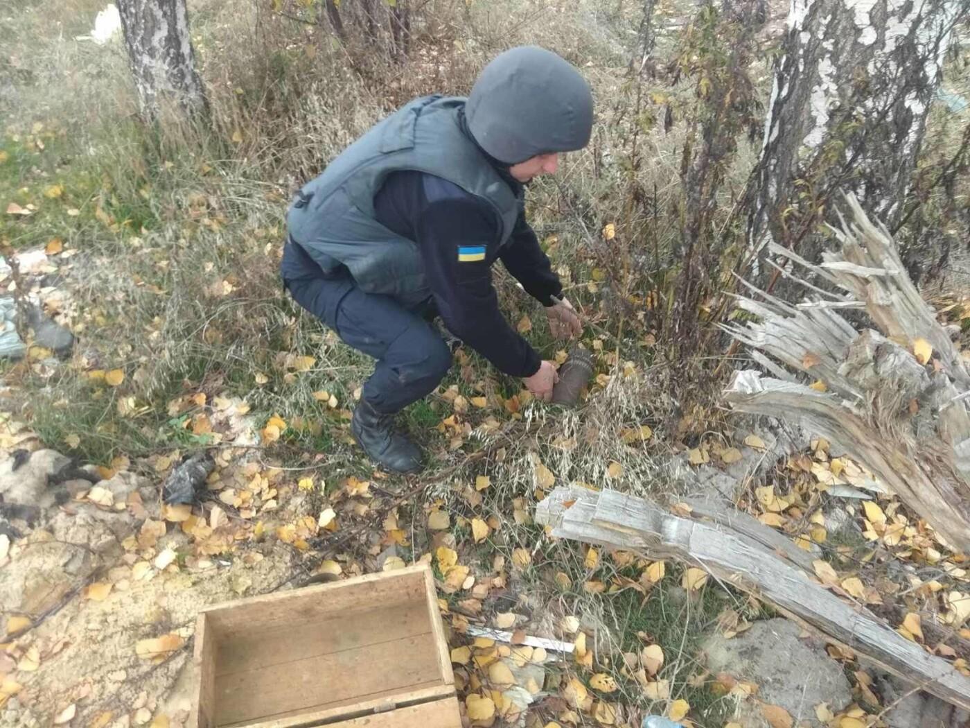 В Харьковской области подорвали 96 снарядов времен Второй мировой войны, - ФОТО, фото-2