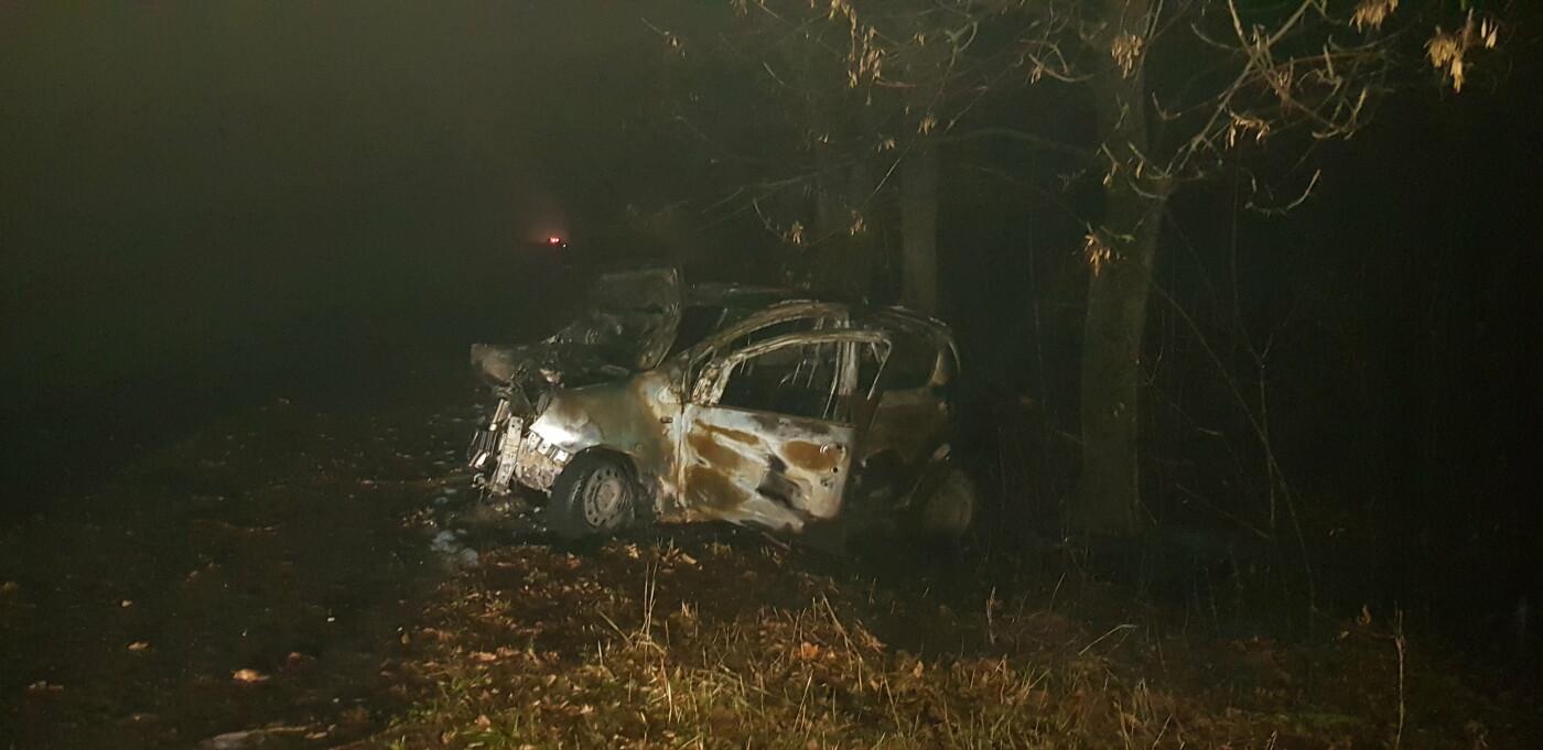 На Харківщині легкове авто в'їхало в дерево та загорілось: постраждали мати і донька, - ФОТО, ВІДЕО, фото-2