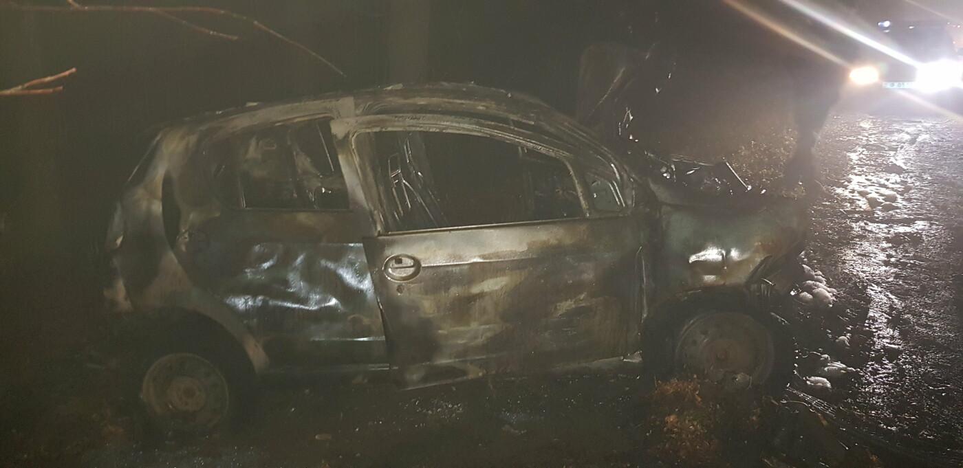 На Харківщині легкове авто в'їхало в дерево та загорілось: постраждали мати і донька, - ФОТО, ВІДЕО, фото-1