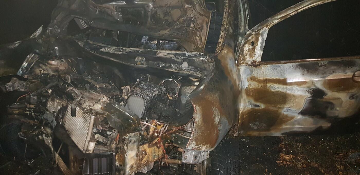 На Харківщині легкове авто в'їхало в дерево та загорілось: постраждали мати і донька, - ФОТО, ВІДЕО, фото-4