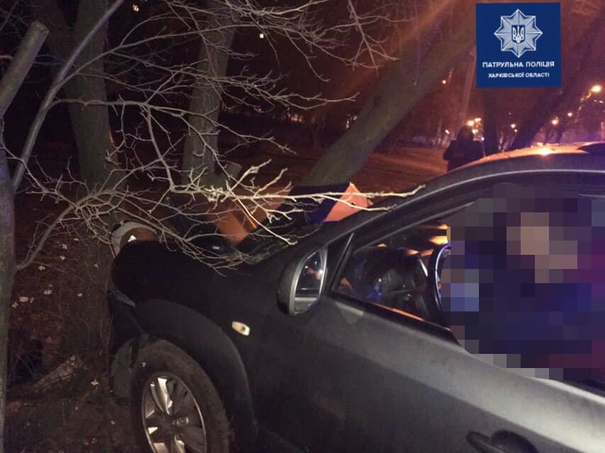 """В Харькове еще один автомобиль """"влетел"""" в дерево: пострадал водитель, - ФОТО, фото-1"""