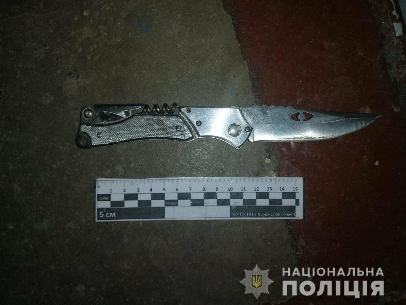 Угрожала ножом и баллончиком: в Харькове женщина напала на иностранку, - ФОТО, фото-1