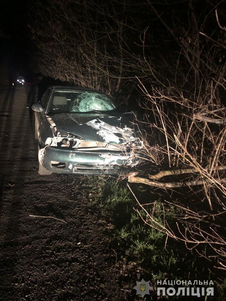 На Харьковщине легковое авто выехало на «встречку» и переехало насмерть пешехода на обочине, - ФОТО, фото-1