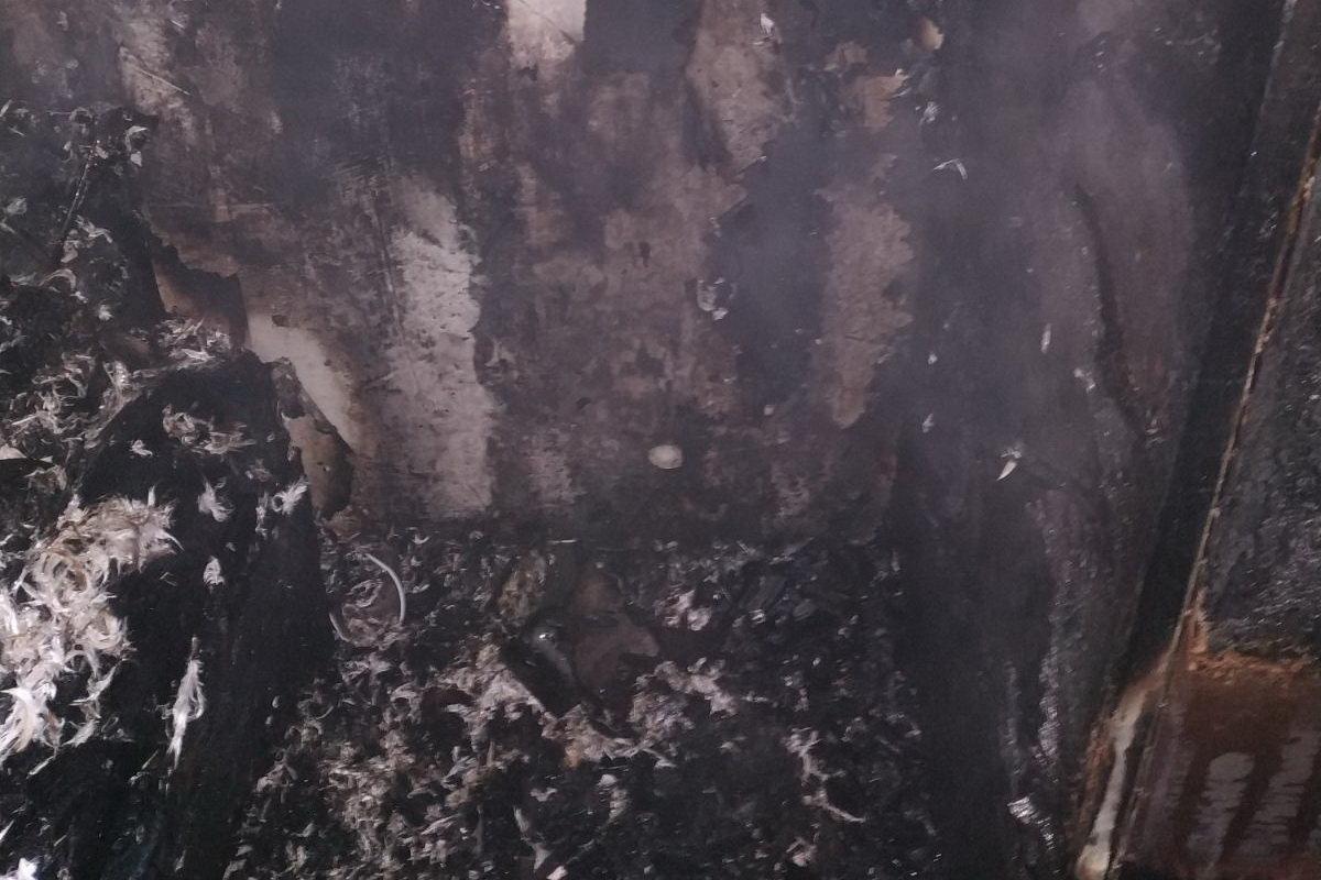 Погибшая пенсионерка и спасение матери с ребенком: в Харькове бойцы ГСЧС тушили пожар в «многоэтажке», - ФОТО, фото-1