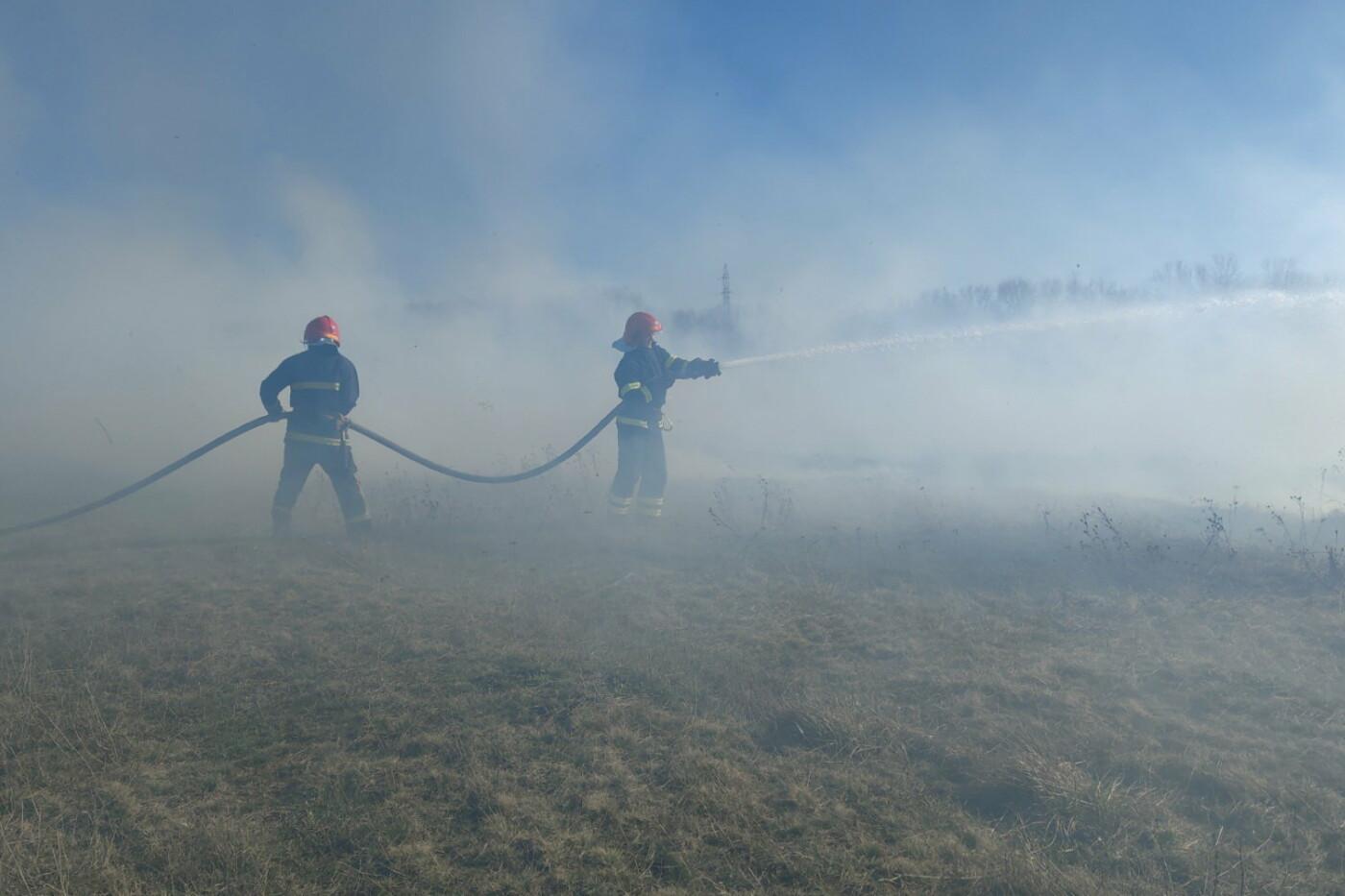 На Харьковщине спасатели тушили десятки пожаров в природных экосистемах, - ФОТО, фото-1