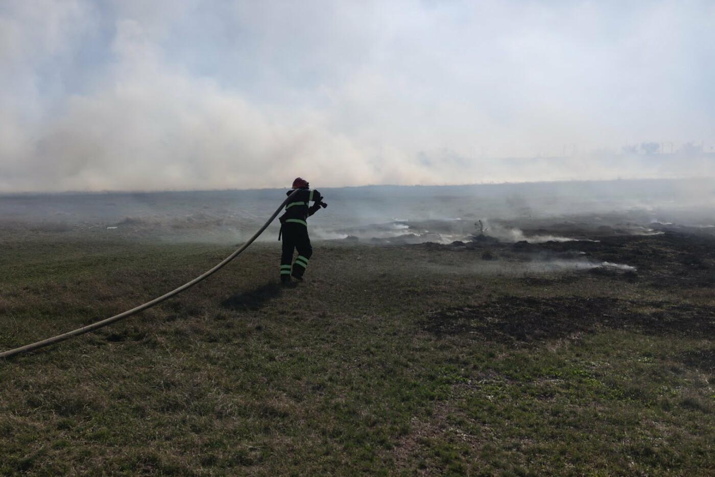 На Харьковщине спасатели тушили десятки пожаров в природных экосистемах, - ФОТО, фото-2