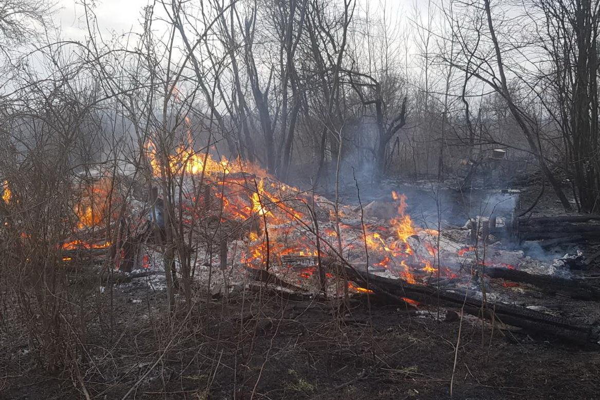 На Харьковщине спасатели тушили сотню пожаров в природных экосистемах: пострадала женщина, - ФОТО, фото-3