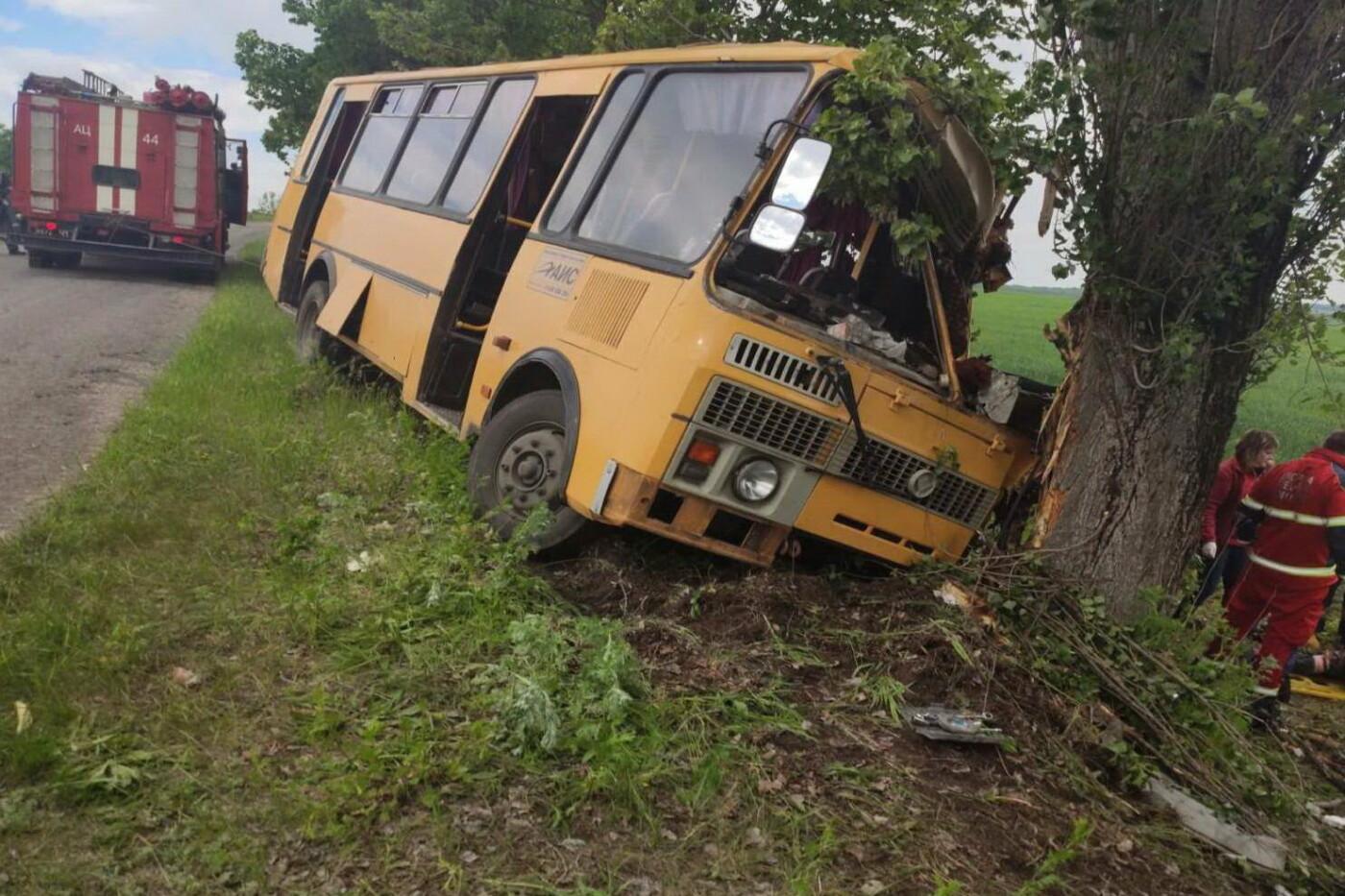 На Харьковщине рейсовый автобус съехал в кювет и «влетел» в дерево: водителя доставали спасатели, - ФОТО, фото-1