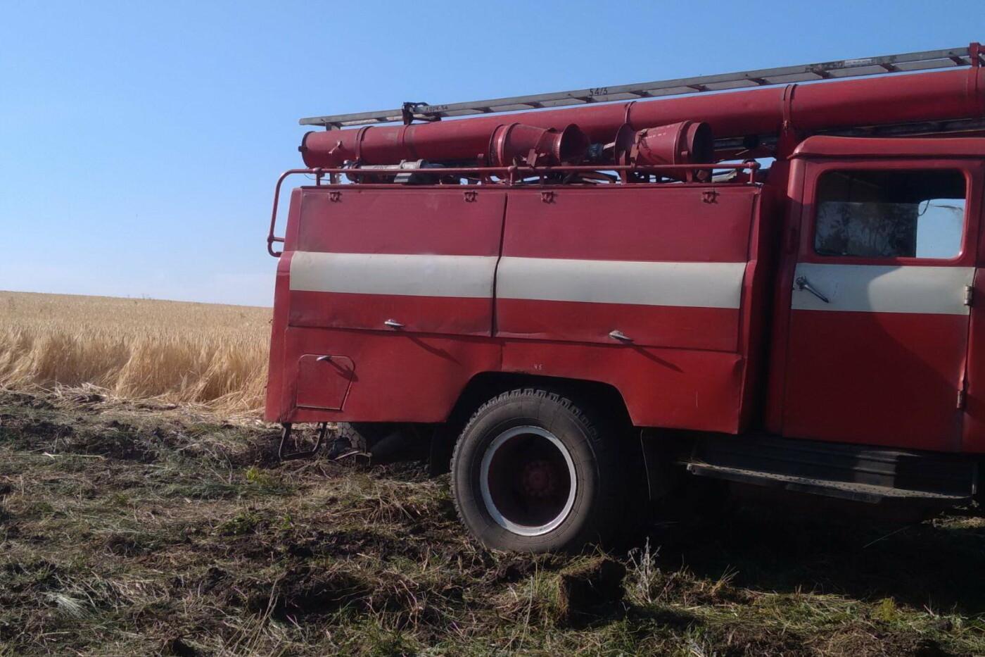 На Харьковщине бойцы ГСЧС спасли ячменное поле и хвойный лес от масштабного пожара, - ФОТО, фото-1