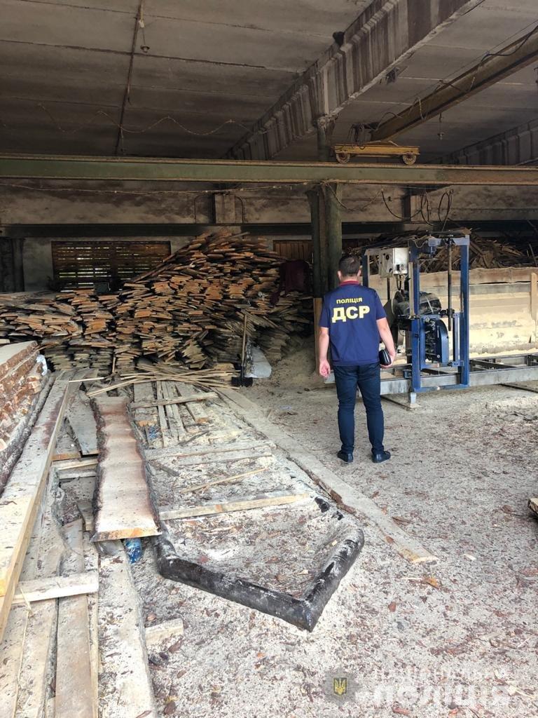 На Харьковщине полицейские разоблачили преступную группу в незаконной вырубке леса,- ФОТО, фото-1