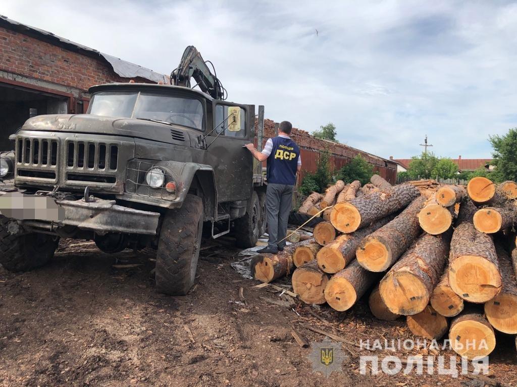 На Харьковщине полицейские разоблачили преступную группу в незаконной вырубке леса,- ФОТО, фото-2