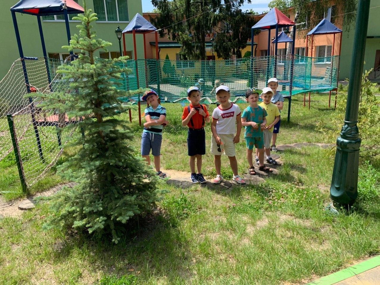 Развитие и образование ребенка в Харькове, фото-3