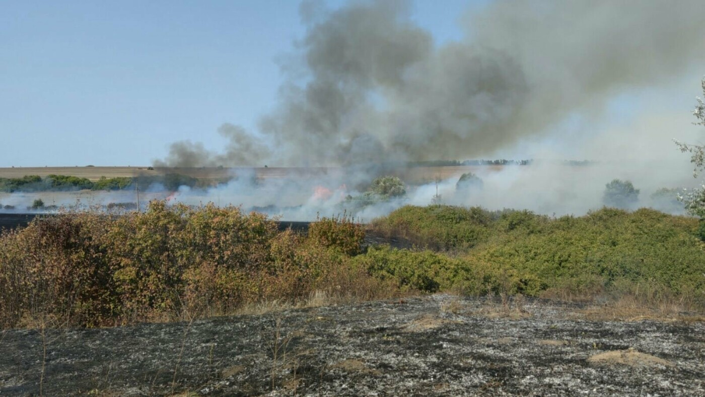 В Харьковской области спасатели потушили более трех десятков пожаров на открытых территориях, - ФОТО, фото-1