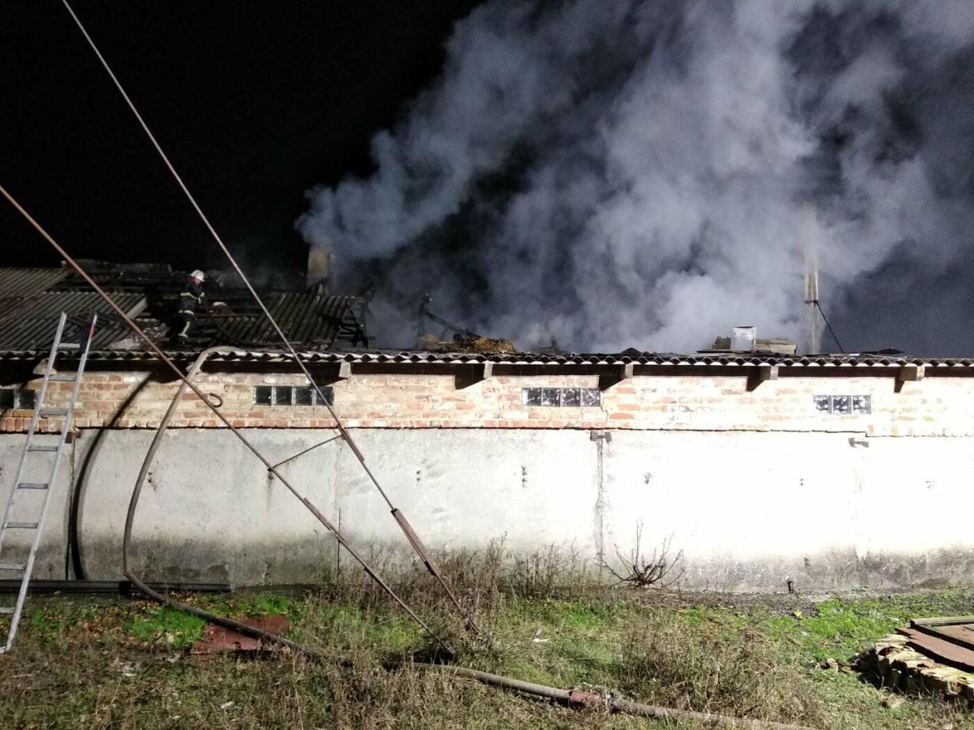 На Харьковщине бойцы ГСЧС спасли несколько десятков животных, которые едва не погибли во время пожара, - ФОТО, фото-2