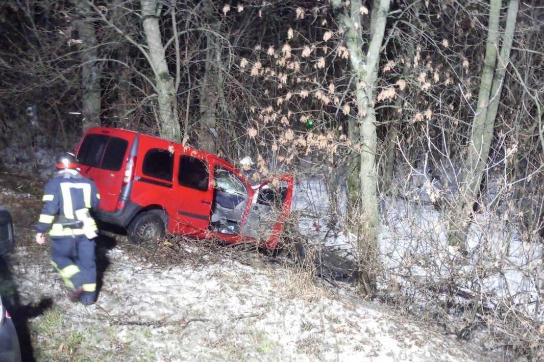 Под Харьковом легковое авто слетело в кювет и врезалось в дерево: водителя вырезали спасатели, - ФОТО, фото-2