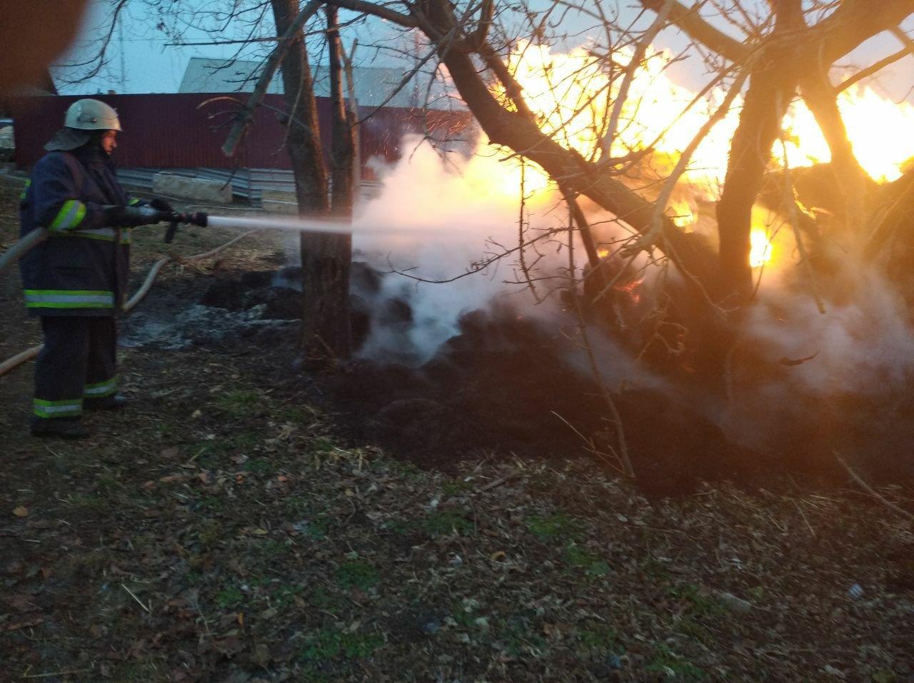 На Харьковщине неизвестные подожгли тонну заготовленной соломы, - ФОТО, фото-1