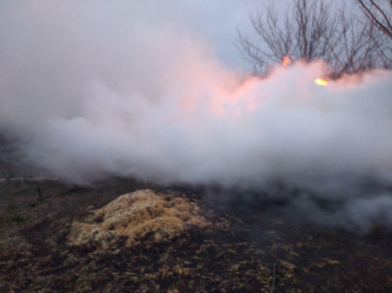 На Харьковщине неизвестные подожгли тонну заготовленной соломы, - ФОТО, фото-4