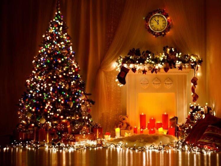 Живая или искусственная: какую елку стоит поставить в этом году, - ФОТО , фото-2