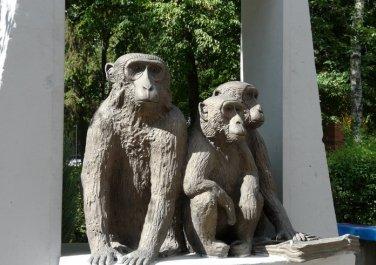 Медведи с «ожирением», обезьяны в Госпроме и застреленный жираф в подъезде: история старейшего зоопарка Украины, фото-5