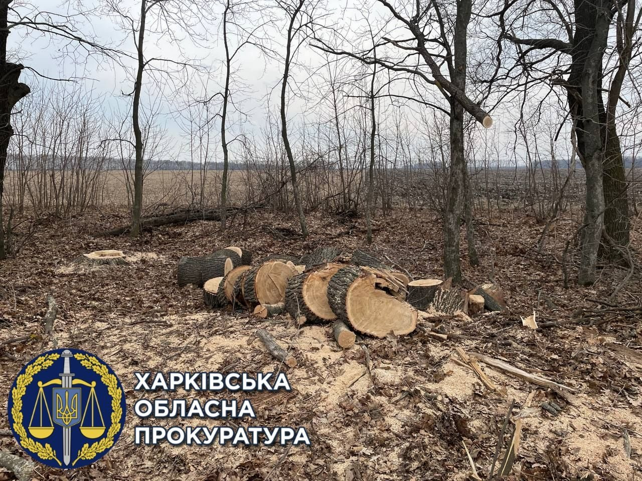 Фото: прокуратура Харьковщины
