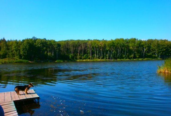 Рыбалка в Харьковской области. Где можно отдохнуть с удочкой в мае , фото-1