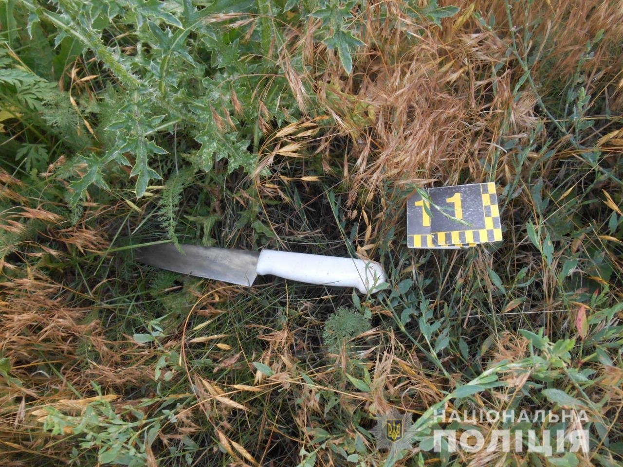 Труп в коридоре дома нашла жена убийцы: на Харьковщине пенсионер зарезал местного жителя, - ФОТО, фото-1