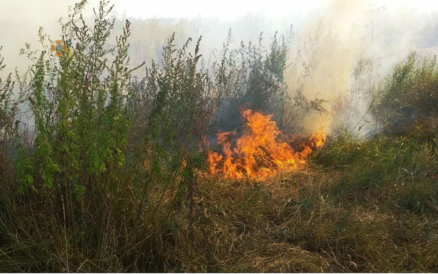 На Харьковщине за последние сутки спасатели тушили три десятка пожаров на открытых территориях, - ФОТО, фото-3